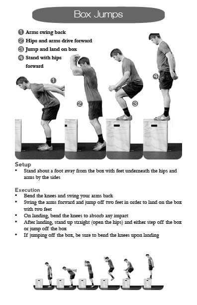 Learn How To Do A Box Jump With Our Technique  Setup And