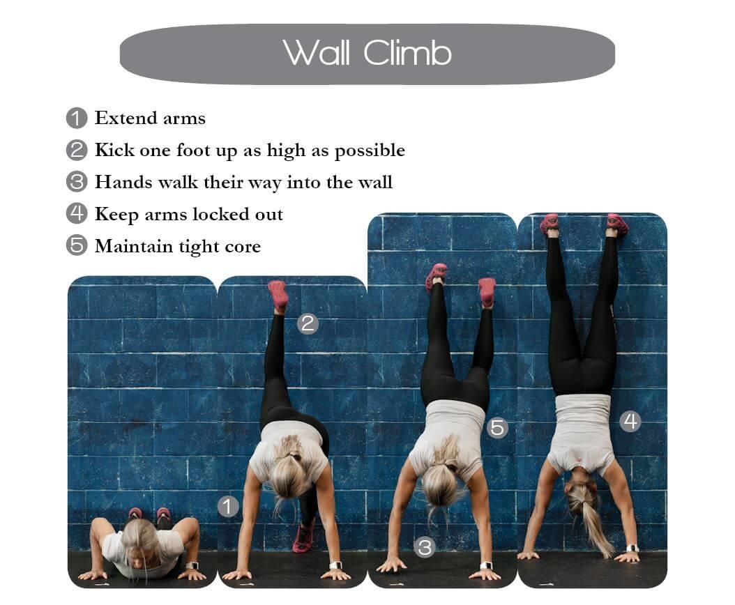 Description of Wall Climb setup and execution